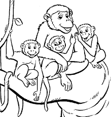monkey color page jungle animals coloring pages monkey picture