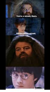 Are You A Wizard Meme - 25 best memes about youre a hairy wizard youre a hairy