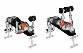 Bench Without A Spotter Incline Dumbbell Press Why You Should Add It To Chest Days Gym