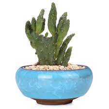 cute ice glazed ceramic container succulent plant pots for