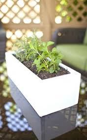 Window Sill Herb Garden Designs Herb Planters For Window Sills Herb Planters For Window Sills