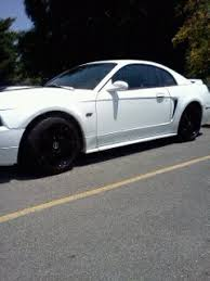Mustang With Black Rims White Stangs With Black Wheels Forums At Modded Mustangs