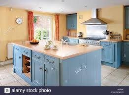 blue kitchen cabinets and yellow walls a large country kitchen with traditionally styled units in