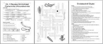 and roundworms review worksheet for biology or zoology
