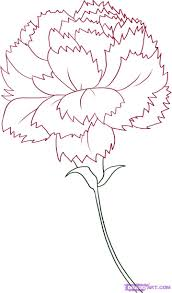 flower in vase drawing carnation flower drawing how to draw a carnation step by step
