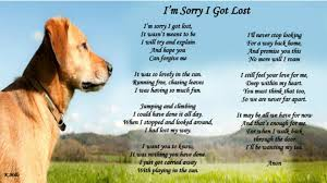 Lost Dog Meme - amazing poem about a lost dog