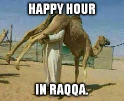 Camel Meme - camel keg imgflip