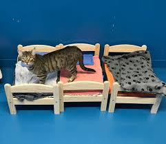 donate ikea furniture ikea donates doll beds to cat shelter cats can t get enough of