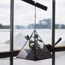 syndicate sales glass terrarium u0026 reviews wayfair