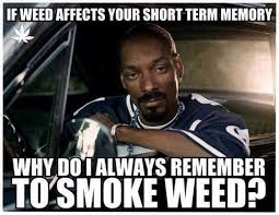 Smoke Weed Meme - snoop dogg always remembers to smoke weed viral viral videos