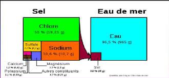 composition du sel de cuisine memoire impact de la salinité due au traitement de sel