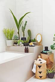 Home Decoration Plants by Best 20 Plants In Bathroom Ideas On Pinterest Bathroom Plants