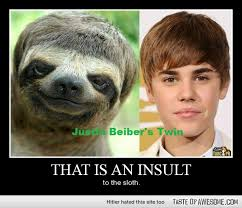 Sloth Meme Jokes - it is poor sloth looking like jb poor thing that s funny