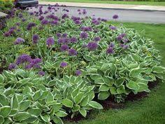 beautiful perennial bed love the color texture and flow lots