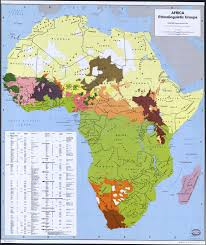 Africa Map by George Murdock U0027s Map Of The Ethnolinguistic Groups Of Africa