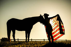 Horse With American Flag Photography By Mike Brulo