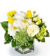 fort worth florist fort worth florists arlington grapevine tcu florist in ft