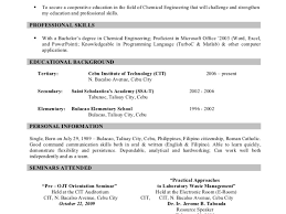 Resume Sample Format For Abroad by Sample Professional Resume Format