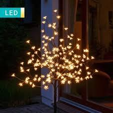 blossom light up tree