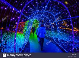 hudson gardens christmas lights a tunnel of lights a hudson christmas holiday light show at hudson