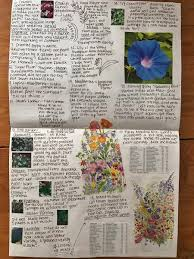 my garden journal u2013 callista faucher