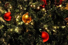 free photo tree lights balls free image on