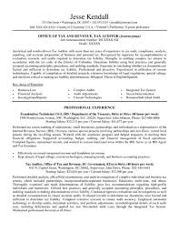 attractive resume format for experienced attractive design ideas federal resume template 8 10 free samples image gallery of attractive design ideas federal resume template 8 10 free samples examples format