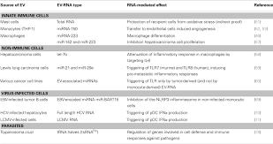 frontiers u201csmall talk u201d in the innate immune system via rna