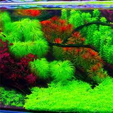 aquarium decorations shop aquarium decorations buy cheap aquarium decorations online at