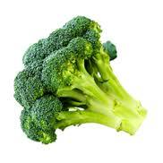 cuisiner brocolis frais cuisiner le brocoli recettes bienfaits et calories cahier de