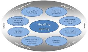 ijerph free full text indicators for healthy ageing u2014 a debate