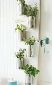 22 best indoor herb garden images on pinterest herbs garden
