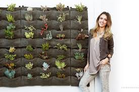 celebrities with green homes jessica alba lisa ling and four