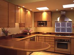 Kitchen Light Under Cabinets Kitchen Traditional Kitchen Design With Black Restaining Cabinets