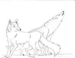 arctic fox coloring page youtuf com