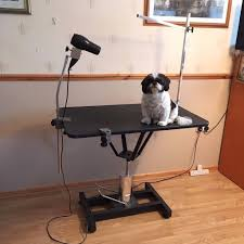 diy dog grooming table affordable dog grooming table arm beblincanto tables