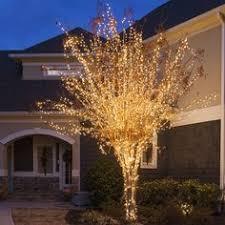 C9 White Christmas Lights Outdoor Christmas Lights Ideas For The Roof C9 Christmas Lights