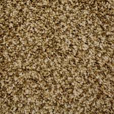 shop carpet at lowes com