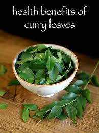 curry tree herb murraya koenigii top 7 health benefits of curry leaves diy home remedies with