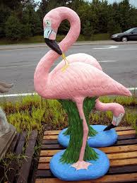 76 best tropical yard images on pink flamingos