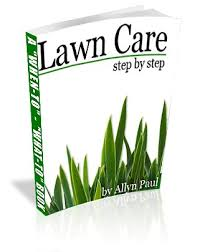 lawn care programs for do it yourself lawn care ebooks and lawns
