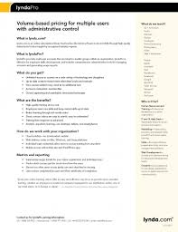 Resume Examples It by Cv Sample It Skills