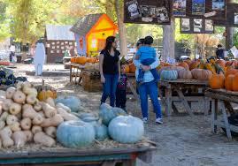 halloween city san bernardino ca pumpkins festivals and halloween oh my fall has arrived in