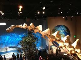 dinosaur exhibit seen from above in the bird section picture of