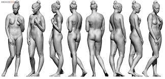 Female Anatomy Reference Male Body Reference Anatomy 360