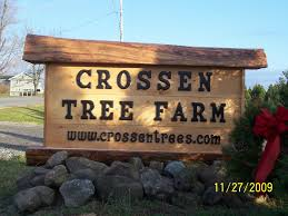crossen christmas tree farm in genesee county right between