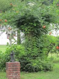 august 2013 hudson valley gardens