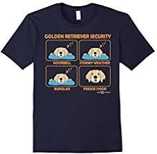 affenpinscher venta mexico goldendoodle a golden retriever poodle mix spockthedog com