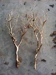 paint tree branches with metallic gold or silver spray paint and