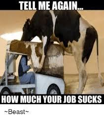 Family Sucks Meme - 25 best memes about your job sucks your job sucks memes